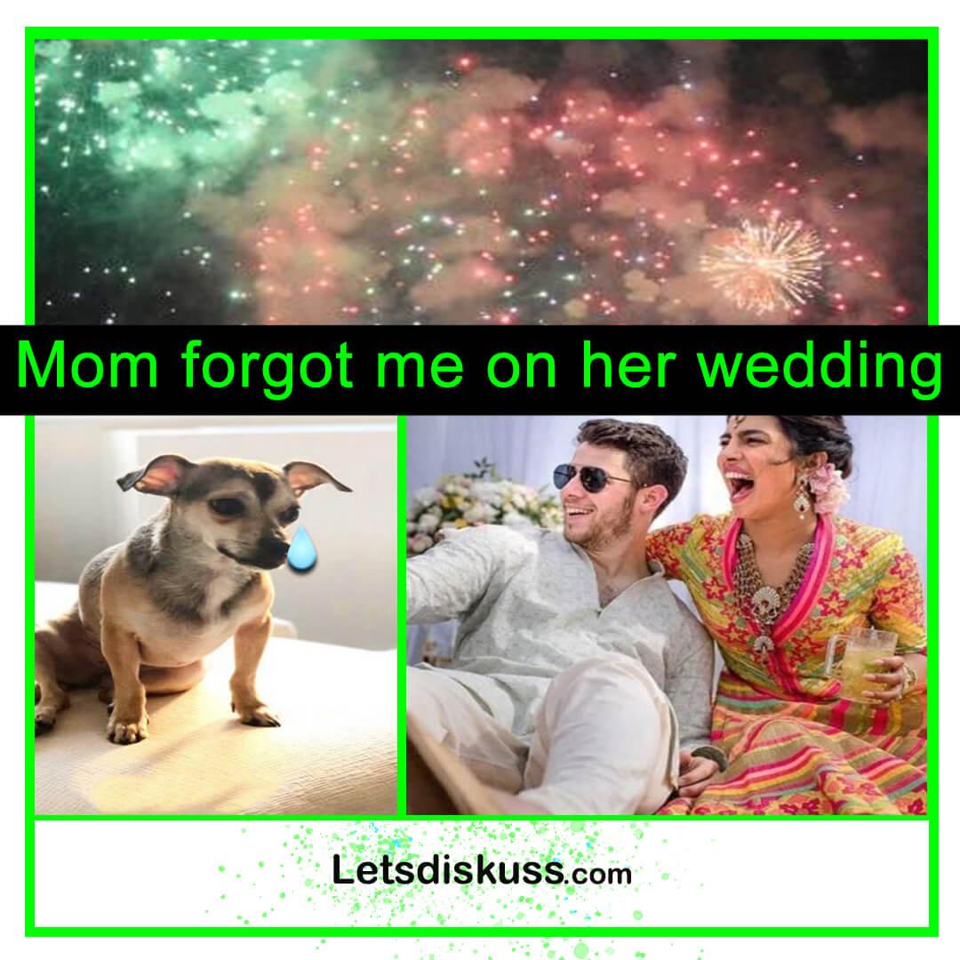<p class='stitle'>Mom forgot me on her wedding</p><div class='col-xs-6 col-sm-6 col-md-6 text-center'><a class='slider_share' href='#'' data-toggle='modal' data-target='#myModal'><i class='fa fa-heart-o'></i></a></div><div class='col-xs-6 col-sm-6 col-md-6 text-center'><a href='#share' data-url='myurl' class='slider_share' onClick='shareSlide(280)'><i class='fa fa-share-alt'></i></a></div>